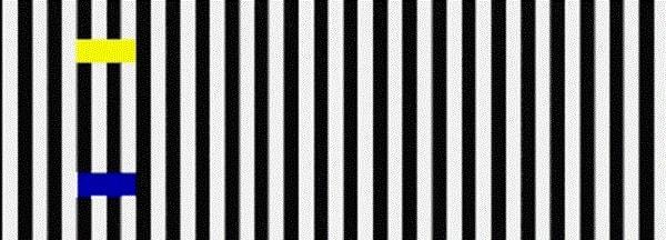 các loại ảo ảnh thị giác 2