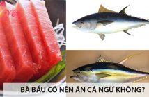 Bà bầu có nên ăn cá ngừ không? 2