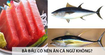 Bà bầu có nên ăn cá ngừ không? 4