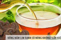 Uống nấm lim xanh có nóng không? Cần kiêng gì khi uống?